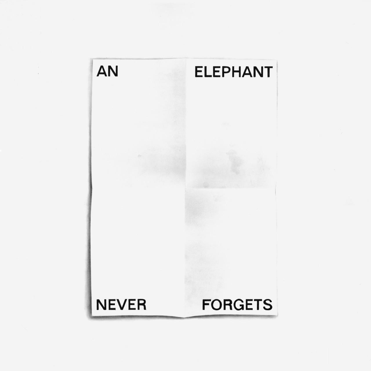 TERESA ESGAIO  An Elephant Never Forgets Grid
