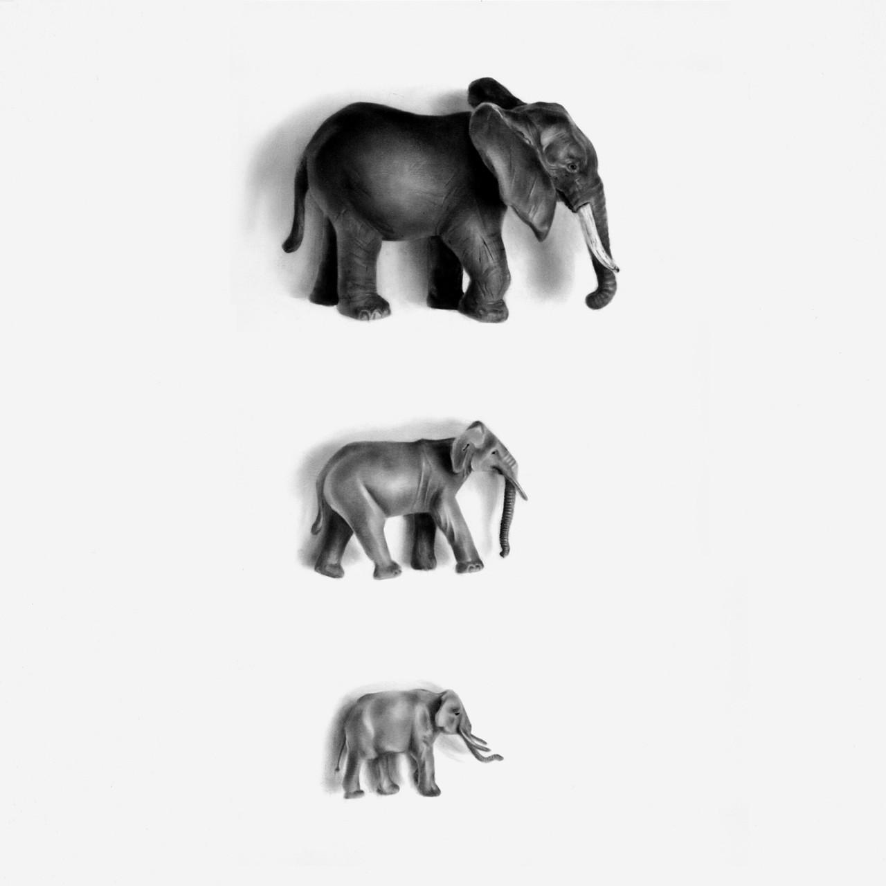 TERESA ESGAIO  An Elephant Never Forgets